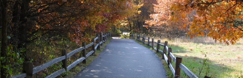 Springbrook Trail