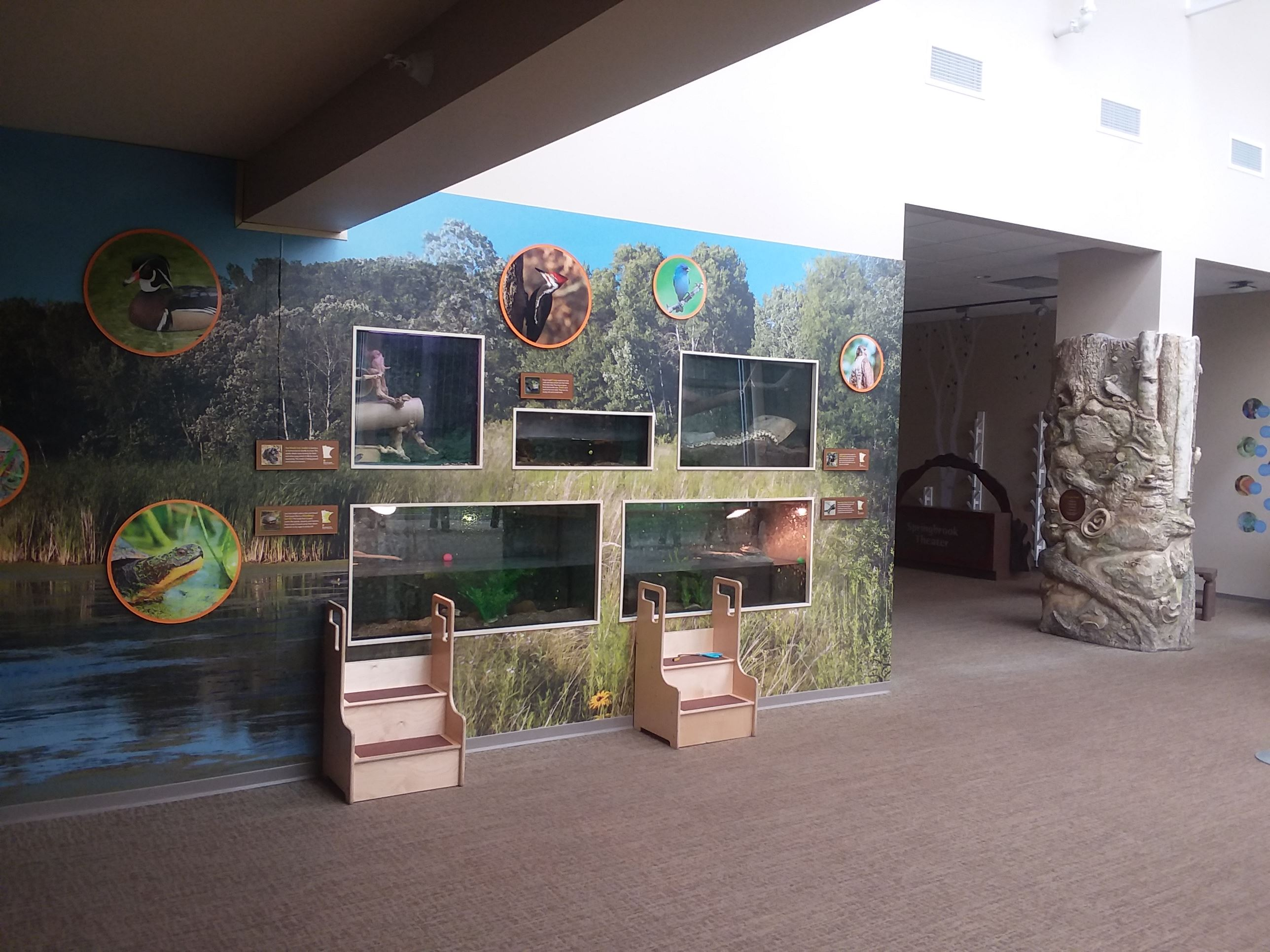 Animal Exhibits