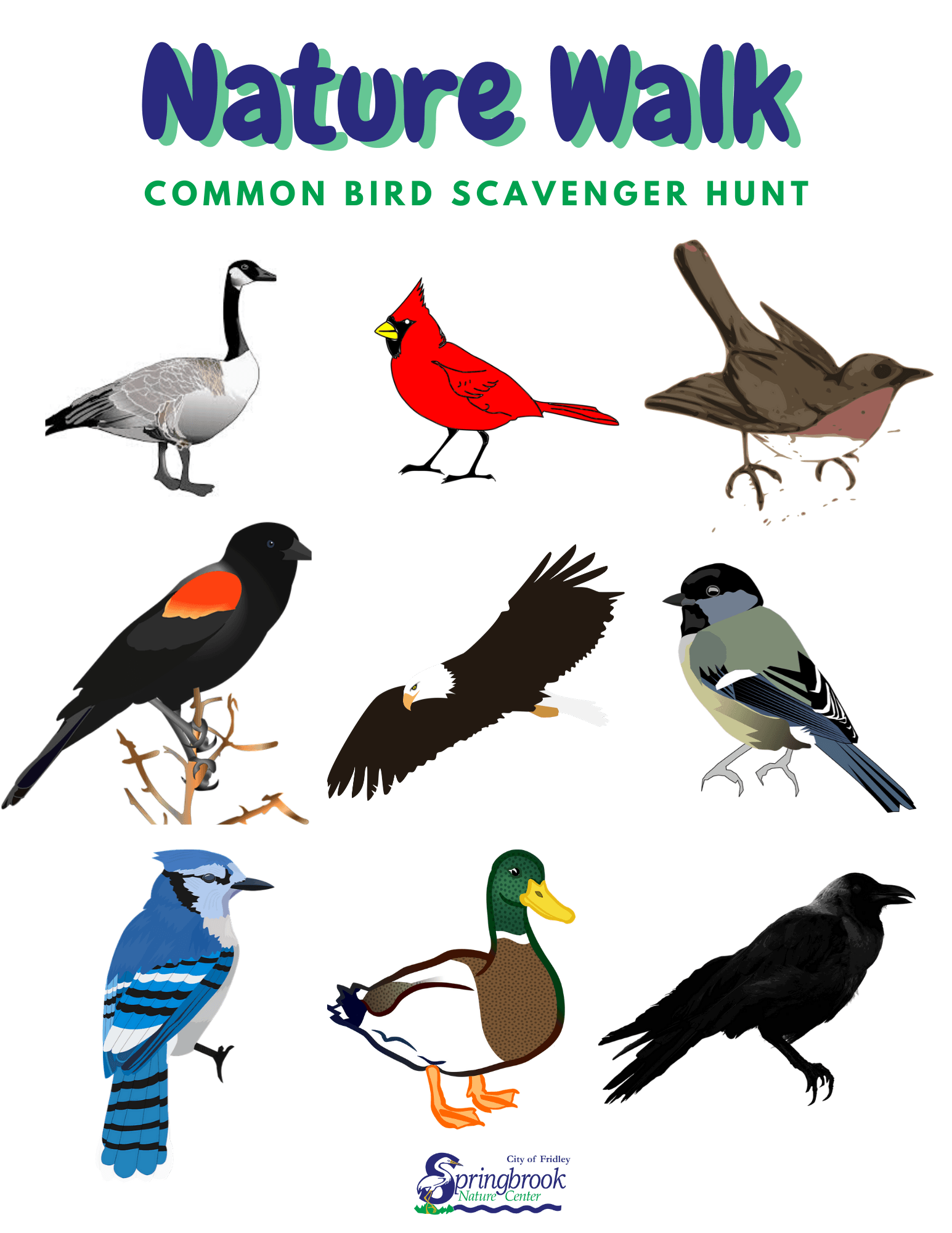 Bird Scavenger Hunt Opens in new window